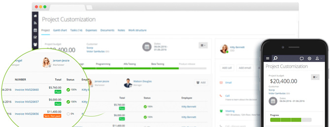 Flowlu Project Management & Collaboration Tool